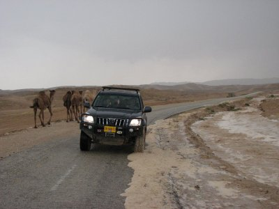 12 May 2007 - 15:00 - Judean Desert Jeep Trip - Back on solid road while flood waters flow by (Tomer Shkolnik photo)