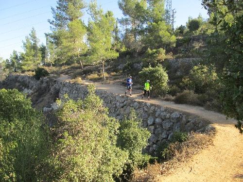 2013-10-26_Israel_Trail-b-08