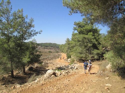 2013-10-26_Israel_Trail-b-17