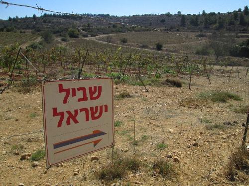 2013-10-26_Israel_Trail-b-18